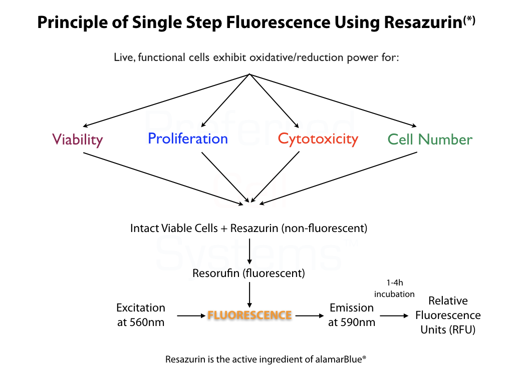 Preferred Cell Systems -- HemoFLUOR PCA
