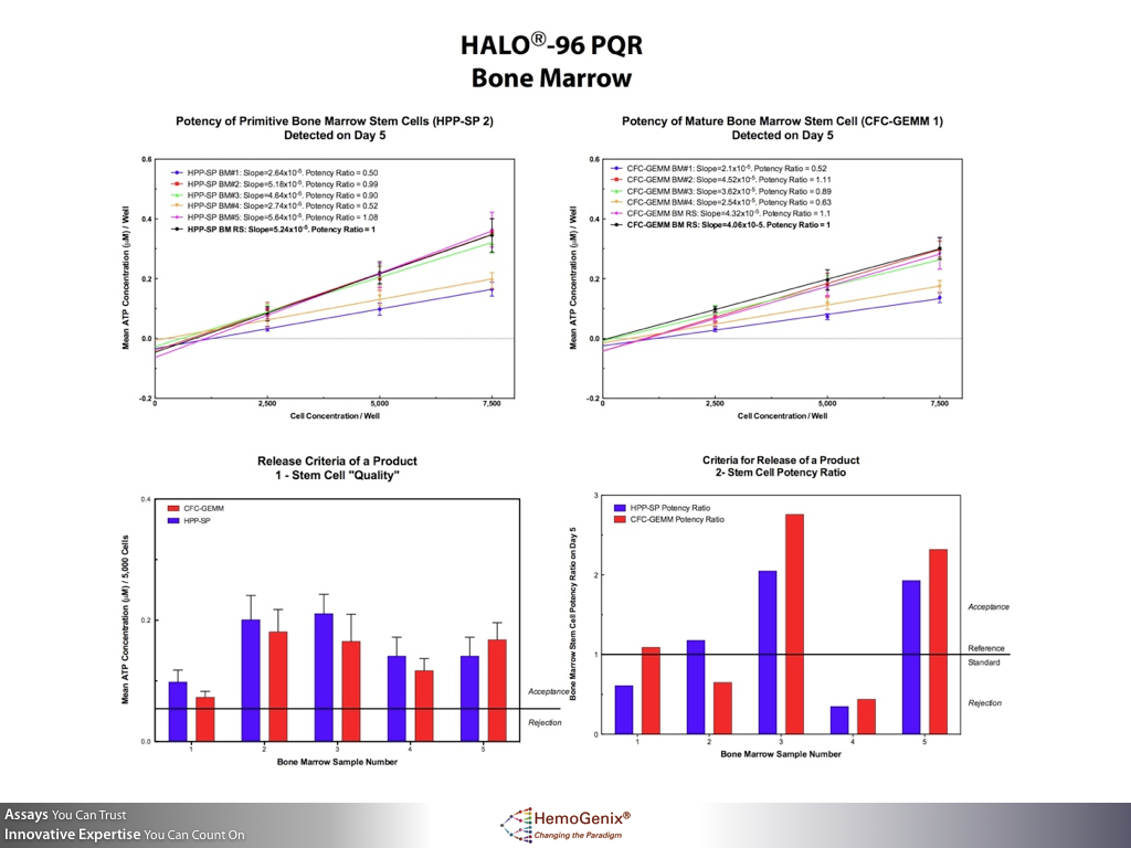 HALO-Potency: How Stem Cell Potency, Quality and Release Criteria are Determined Bone Marrow